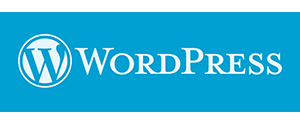 Интеграция CRM SalesDrive с WordPress